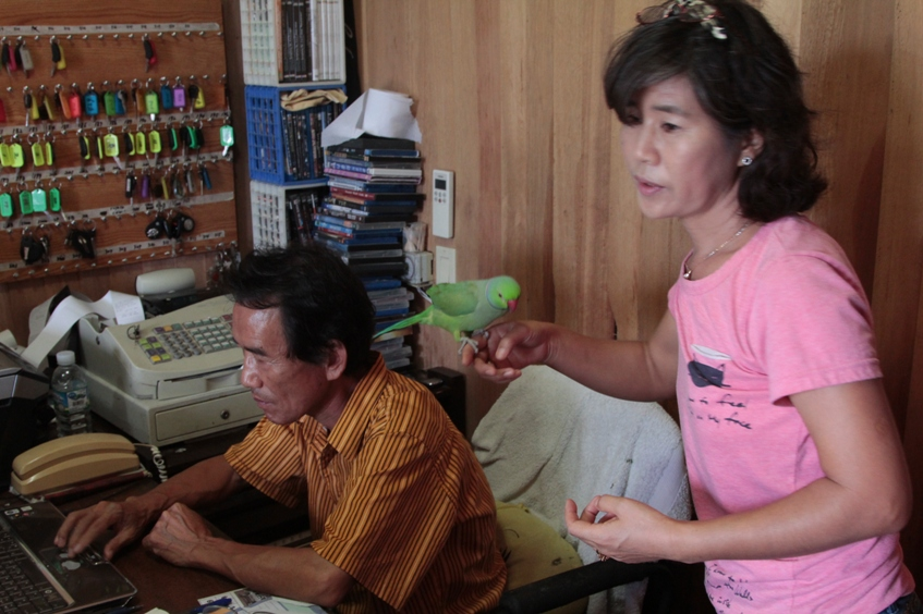 Марианы (Гуам, Сайпан, Тиниан). 20 Январь 2013 15:33 четырнадцатое