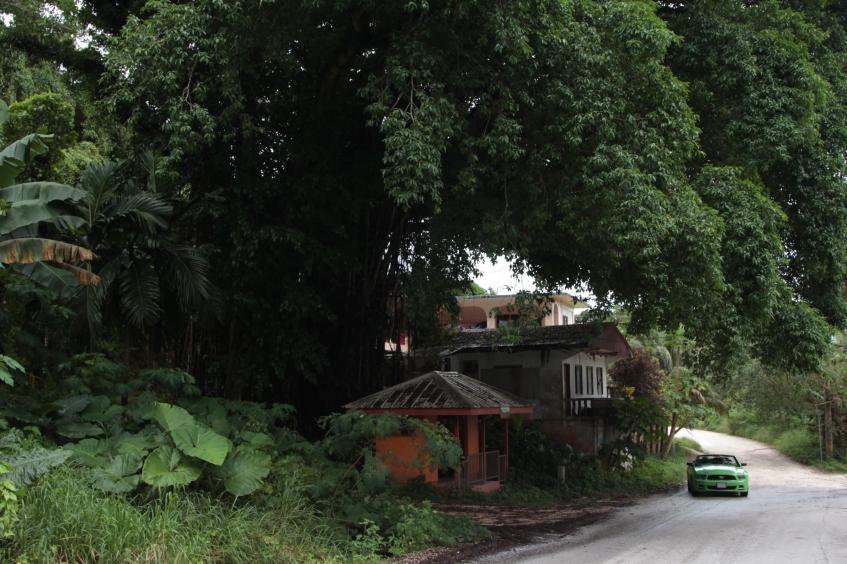 Марианы (Гуам, Сайпан, Тиниан). 20 Январь 2013 16:21 тринадцатое
