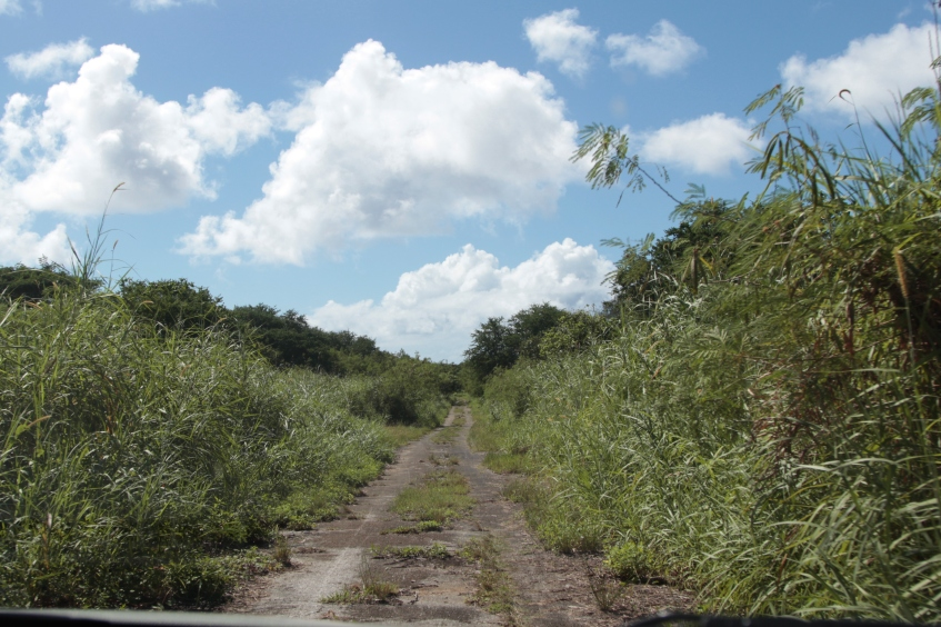 Марианы (Гуам, Сайпан, Тиниан). 11 Август 2013 11:29 семнадцатое